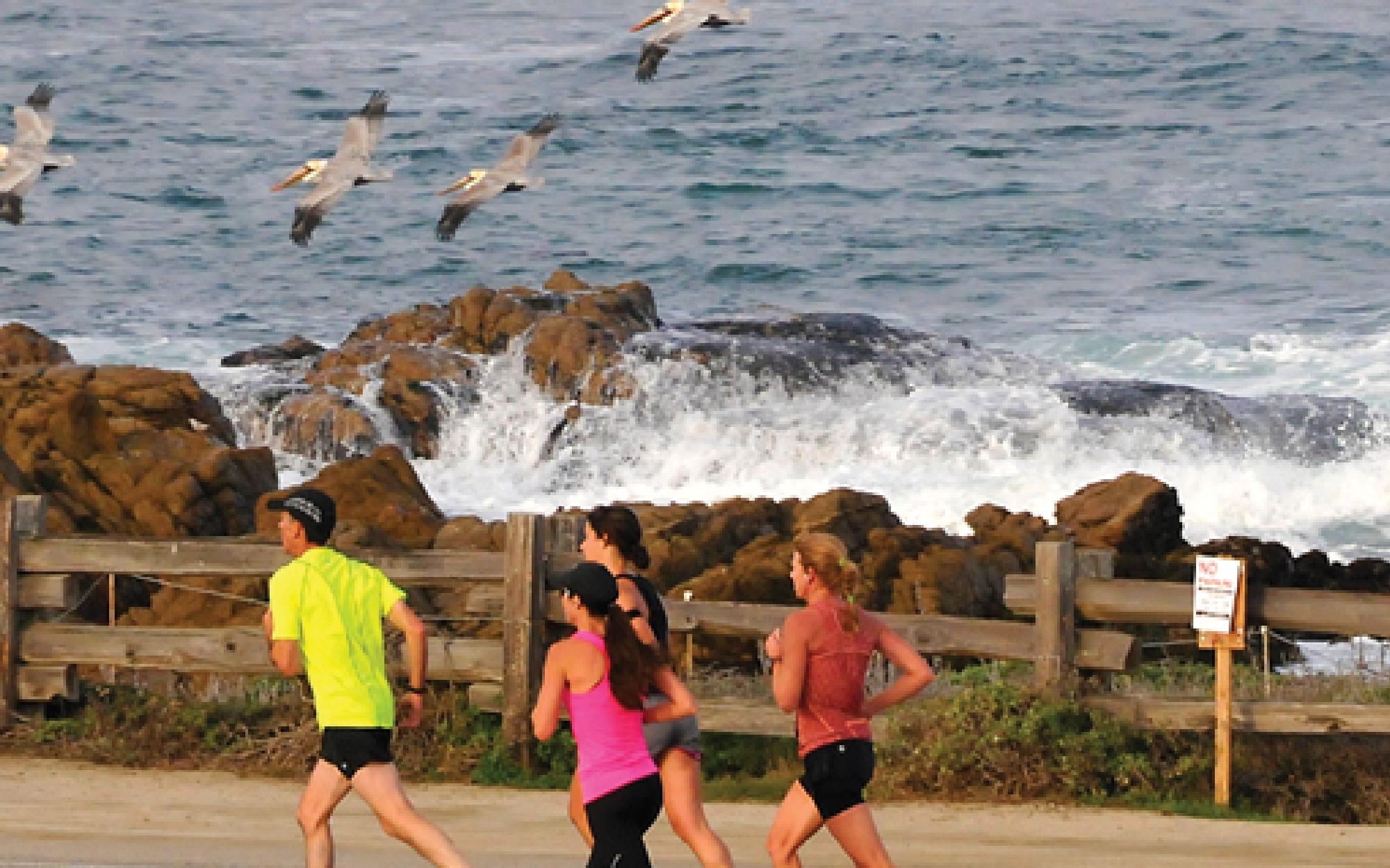 Monterey bay women seeking men