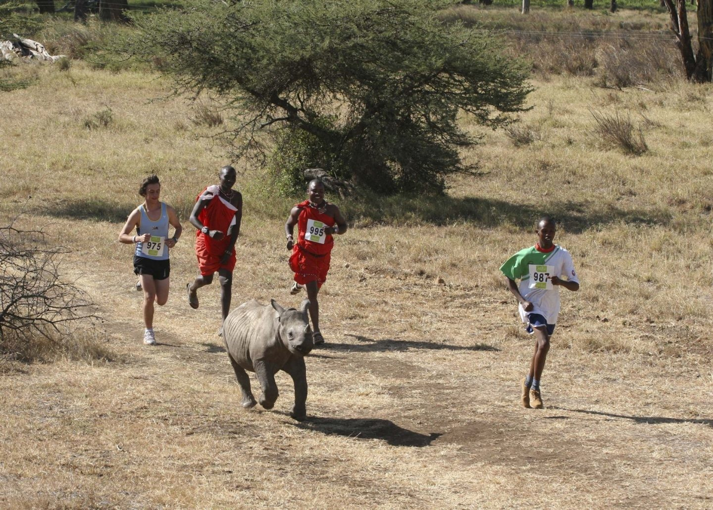 Huawei Kenya and Safaricom pump millions into Lewa Safari Marathon