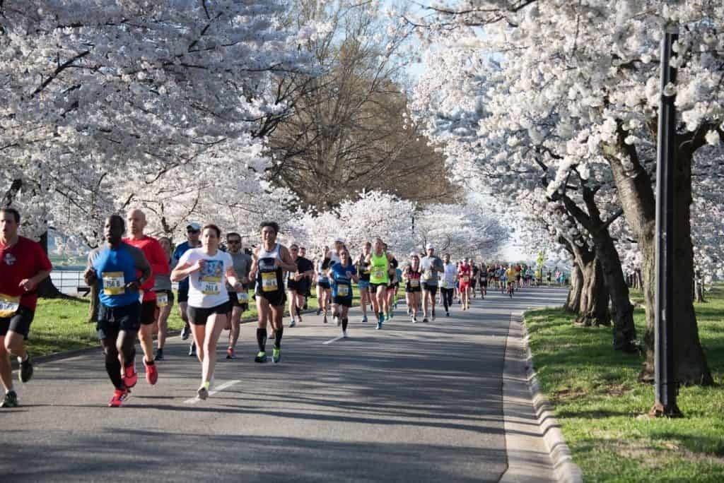 Organizers call for participants to run the Virtual National Cherry Blossom Festival, March 20 – April 11 wherever they are