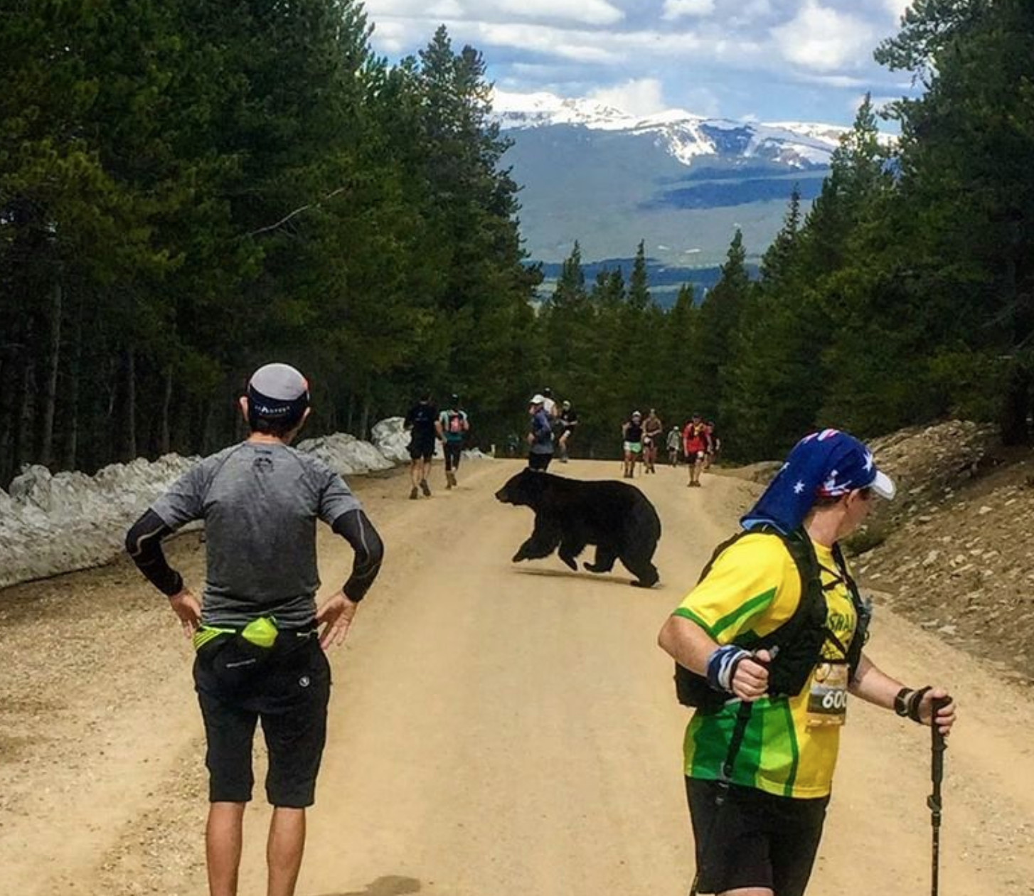 A bear jumped out between runners, during Leadville trail marathon