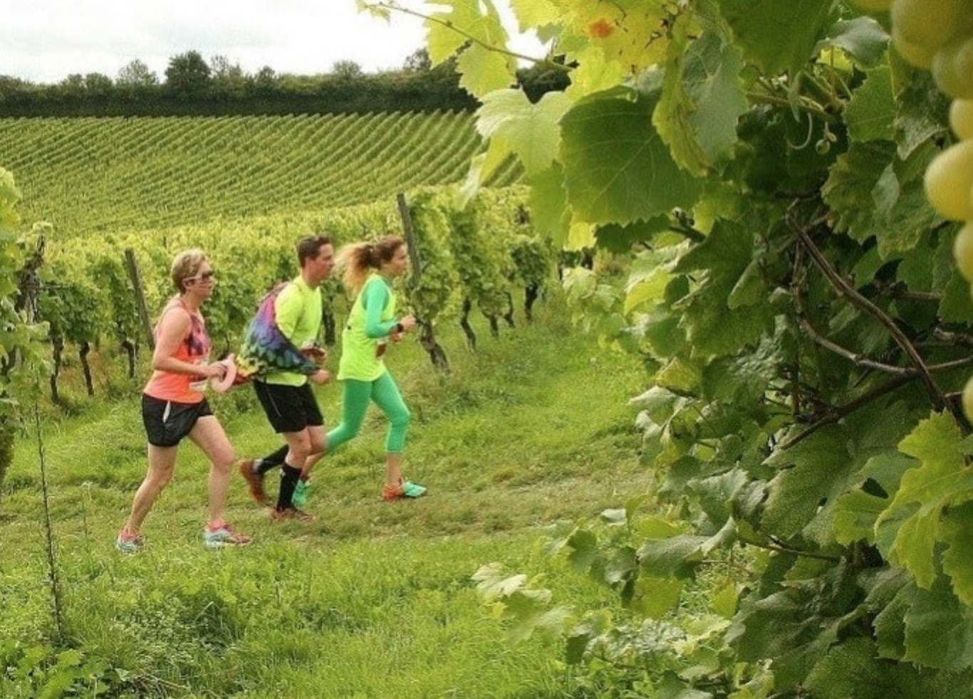 A Marathon With Ten Wine Breaks Is Coming To London This Year