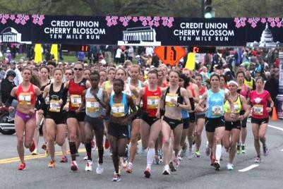 The Cherry Blossom Ten Miler has a lot of exciting things Planned